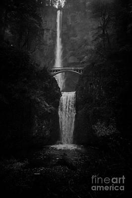 Photograph - Multnomah by Steve Triplett