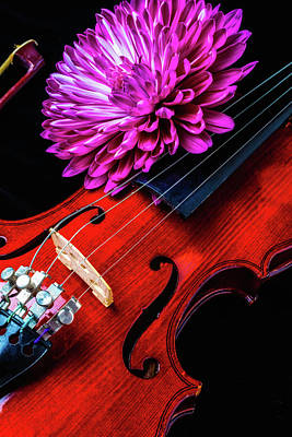 Fiddling Photograph - Mum And Violin by Garry Gay