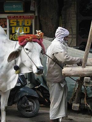 Photograph - Mumbai-india by Duncan Davies