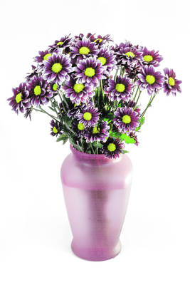 Photograph - Mums In Pink Vase by Greg Thiemeyer