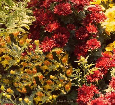 Photograph - Mums by Kathie Chicoine