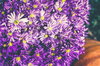 Photograph - Mums The Word by Christi Kraft