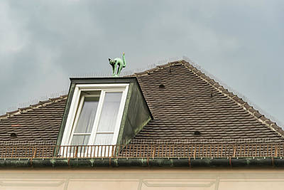 Photograph - Munich Roof Charms - Kitty Cat Sculpture On A Dormer by Georgia Mizuleva