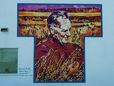 Painting - Mural 12x120 Feet Detail Wheat King Herman Trelle by Tim  Heimdal
