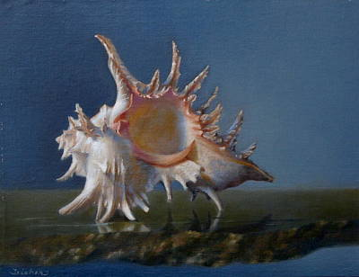 Wall Art - Painting - Murex Shell by Amanda Teicher