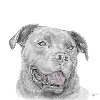 Murphy Forever Home Art Print by Stacey May