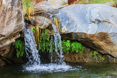 Palm Springs Photograph - Murray Canon Tranquility II by Scott Campbell