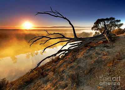 Murray River Sunrise Art Print by Bill  Robinson