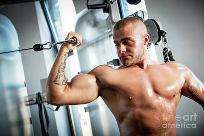 Photograph - Muscular Man Working Out In A Gym. by Michal Bednarek