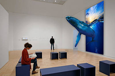 Mixed Media - Museum Whale Watching by Marvin Blaine