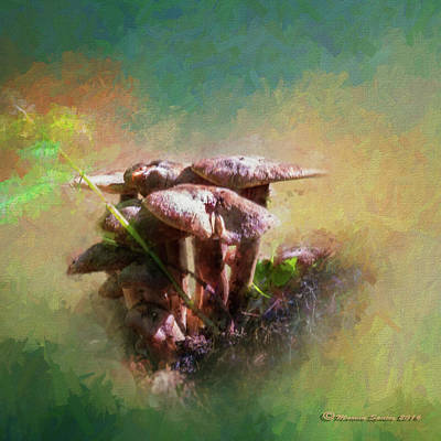 Toadstools Mixed Media - Mushroom Patch by Marvin Spates