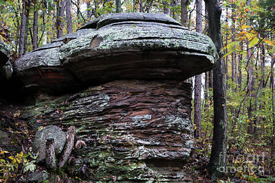 Photograph - Mushroom Rock by Andrea Silies