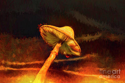 Photograph - Mushroom On Fire by Kay Brewer