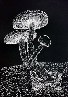 Salamanders Digital Art - Mushrooms by Eva Ryczaj Lemmo