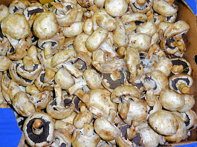 Mushrooms In A Market Art Print