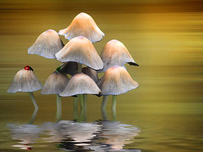 Mushroom Digital Art - Mushrooms by Sharon Lisa Clarke
