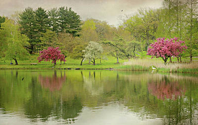 Photograph - Music In The Park by Diana Angstadt