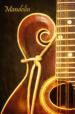 Photograph - Music - Instrument - Mandolin by Nikolyn McDonald