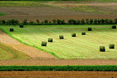 Photograph - Musical Hay Bales by Tana Reiff