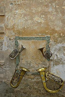 Photograph - Musical Instrument Art - Slovenia by Stuart Litoff