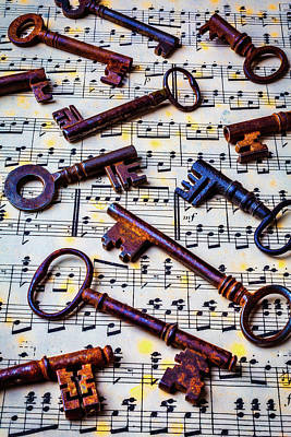 Music Score Photograph - Musical Keys by Garry Gay