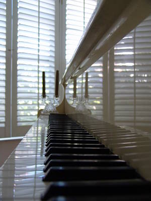 Photograph - Musical Reflections by Florene Welebny