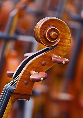 Photograph - Musical Spiral by David Freuthal