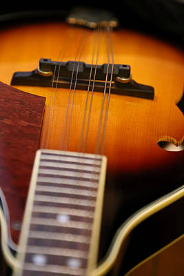 Musicians Royalty Free Images - Musicians View Royalty-Free Image by Theresa Campbell