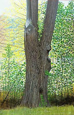 Painting - Muskoka Maple by Kenneth M Kirsch