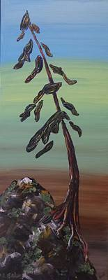 Painting Royalty Free Images - Muskoka Pine  Royalty-Free Image by Kari Parkhouse