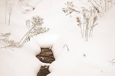 Photograph - Muskoka Winter 2 by Kathi Shotwell