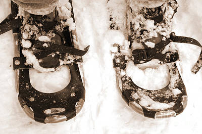 Photograph - Muskoka Winter 4 - Canadian Dancing Shoes by Kathi Shotwell