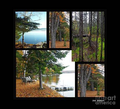 Digital Art - Muskoka,ontario, Canada by Iris Gelbart