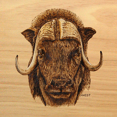 Pyrography - Muskox Pillow/bag by Ron Haist