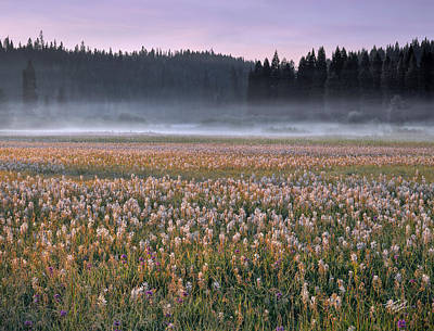 Photograph - Musselshell Meadows by Leland D Howard