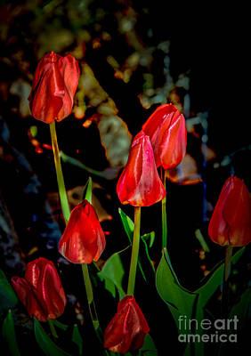 Must Be Spring Print by Robert Bales