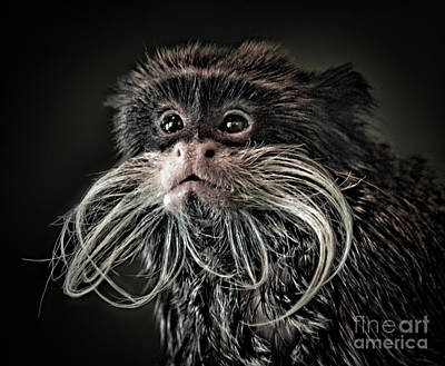 Jim Fitzpatrick Digital Art - Mustache Monkey IIi Altered by Jim Fitzpatrick