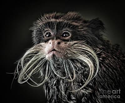 Mustache Monkey IIi Altered Art Print