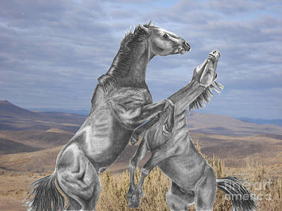 Mustang Battle Art Print by Russ  Smith