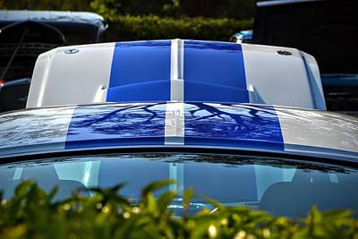 Photograph - Mustang Gt 350 Stripes by Dean Ferreira