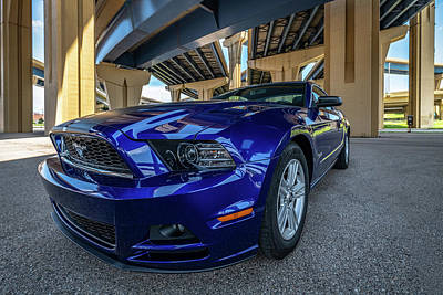 Photograph - Mustang In The City by Randy Scherkenbach