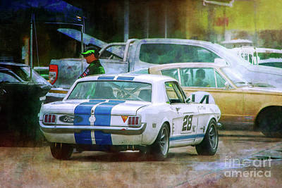 Photograph - Mustang In The Paddock by Stuart Row