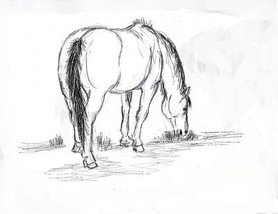 Mustang Mare Field Sketch Art Print by Dawn Senior-Trask