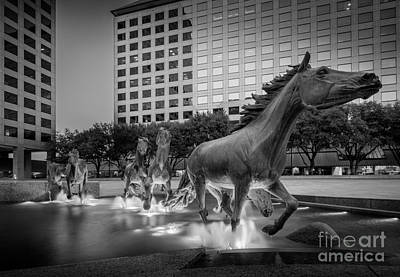 Architecture Photograph - Mustangs At Las Colinas by Inge Johnsson