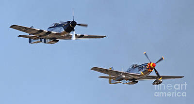 Photograph - Mustangs In Formation by Kevin McCarthy