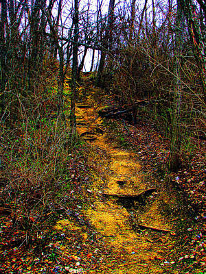 Photograph - Mustard Hill by Marie Jamieson