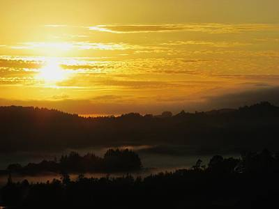 Photograph - Mustard Morning With Valley Fog by Dianne  Connolly