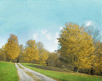 Photograph - Mustard Yellow Trees And Landscape by Brooke T Ryan