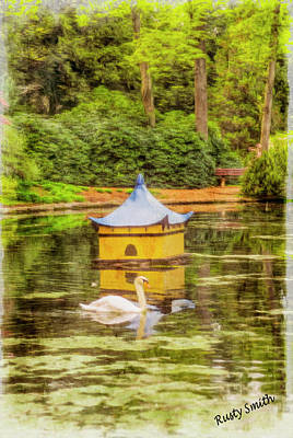 Digital Art - Mute Swan Swimming In Oriental Garden Pond. by Rusty R Smith