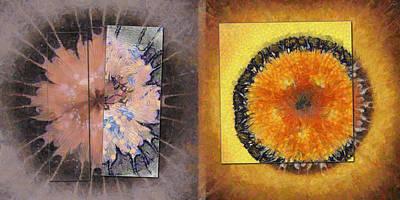 Mutinously Stiffness Flower  Id 16164-100421-32611 Art Print